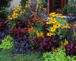 Fall Landscaping Ideas Flower