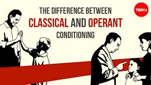 Classical Conditioning In The Classroom The Difference Between Classical And Operant Conditioning Peggy Andover