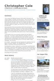Journalism Resume Samples - Visualcv Resume Samples Database
