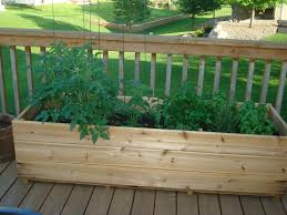 Kitchen Garden Planter Designing Garden Boxes Garden Box Ideas Garden Box Designs