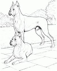 Small Picture Dog Breed Coloring Pages fablesfromthefriendscom