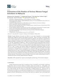 our research paper about bullying introduction