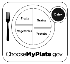 Grains Coloring Pages Preschool Myplate Printables