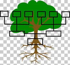 Family Tree Genealogy Cousin Template Family Png Clipart