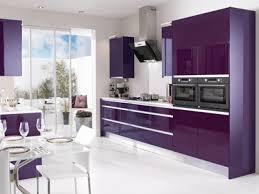 Small Picture Interior Design Ideas Kitchen Color Schemes Purple Kitchen