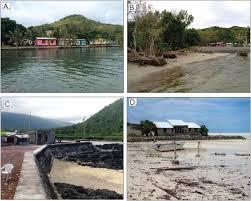 maladaptations along island coasts