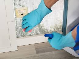 this is how to clean wall paint back to