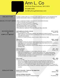 Photographer Resume Free Resume Example And Writing Download