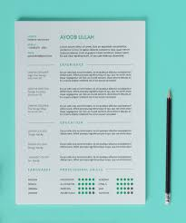 Delighted Nice Clean Resumes Images Professional Resume Example