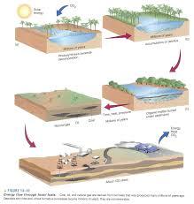 Hydrocarbons | Anjung Sains Makmal 3