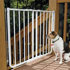 pet gates stairway special outdoor wall mounting gate at drs foster and smith