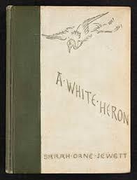 a white heron  a white heron