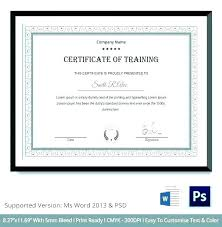 Microsoft Word Certificate Templates Adorable Training Certificate Template Naserico