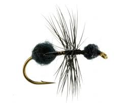 Ant Fly Patterns Amazing Terrestrial Flies Hoppers Ants Beetles Catch Fly Fishing