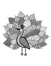 Free Printable Peacock Coloring Pages For Kids Inside Adults