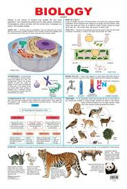 Biology Charts And Posters Educational Charts Series Biology