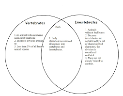 Difference Between Amphibians And Reptiles Venn Diagram Venn Diagram Vertebrates Invertebrates Magdalene Project Org