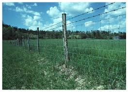 Barbed wire fence cattle Woven Wire Example Fence Iowa State University Extension And Outreach Estimated Costs For Livestock Fencing Ag Decision Maker