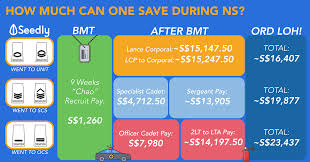 Ns Ippt Chart The Monetary Cost Of National Service Ns