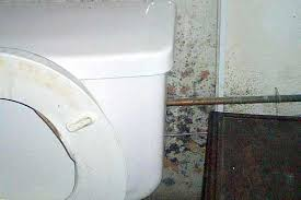 remove mold from bathroom ceiling. Remove And Get Rid Of Mold In Bathroom Wall | Orange From Ceiling