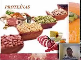 alimentação carboidratos lipídios e
