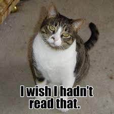 ontological_shock | CAT MACROS | Page 44 via Relatably.com