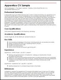 Example Of Cv Unique Apprentice Cv Sample Myperfectcv Waiter