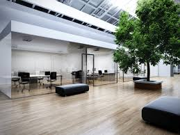 office tree. Office With Tree S