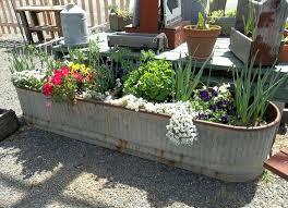 discount plant pots uk. large zinc plant pots cheap metal 15 grand ideas for gardening with antiques discount uk