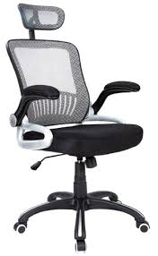 Delighful Desk Chair For Back Pain Lower To Decorating