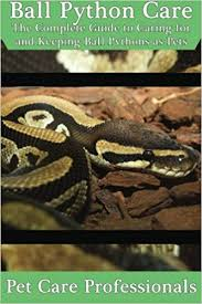 Ball Python Care The Complete Guide To Caring For And