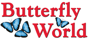 Start Here> ADMISSIONS, HOURS & MORE – Butterfly World