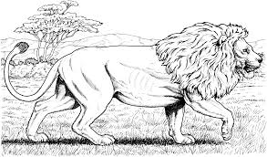 Free Lion Coloring Pages To Print