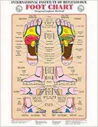 Foot Chart Original Ingham Method Of Reflexology