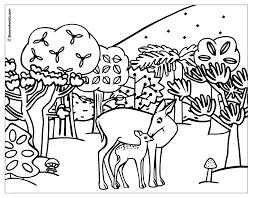 Biche 29 Animaux Coloriages Imprimer