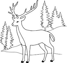 Coloriage Cerf Imprimer