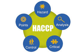 Image result for haccp plan images