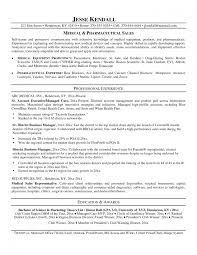 objective statement resume examples template template personal resume examples objective in resume examples objective in resume resume objective examples for s representative resume