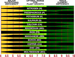 What Is Soil Ph And Why Does It Matter Soil Ph