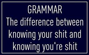 Grammar Quotes Fascinating Funny Quotes Grammar The Difference Between Knowing Your Shit And