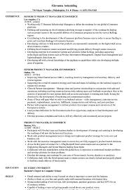 Web Product Manager Sample Resume Product Manager Ecommerce Resume Samples Velvet Jobs 21