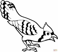 Small Picture Coloring Pages Canary Bird Coloring Page Free Printable Pages