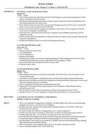 Audit Senior Manager Resume Samples Velvet Jobs