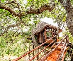 Khao Sok Treehouse Resort  The Selfish YearsTreehouse Accommodation Ireland