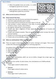 essay questions and answers form chapter  singers solution to world poverty essays biology essay