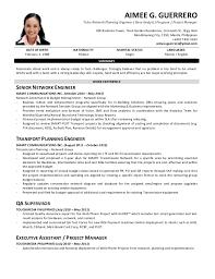 Quality Analyst Cv Cv Guerrero Aimee G _network Planning Engineer Data Analyst Proj