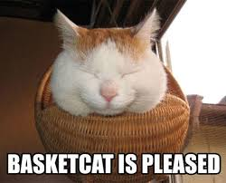 Shironeko / Basket Cat | Know Your Meme via Relatably.com