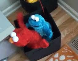 cookie monster dancing gif. Unique Monster Elmo And Cookie Monster Have Some Adult Fun GIF 2 On Cookie Monster Dancing Gif E