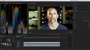 Cinema Raw Light Premiere Pro C200 Raw Luts In In Premiere