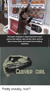 Monkey Uses Vending Machine Simple Macaques Monkeys In Japan Learned To Steal Purses And Wallets Take
